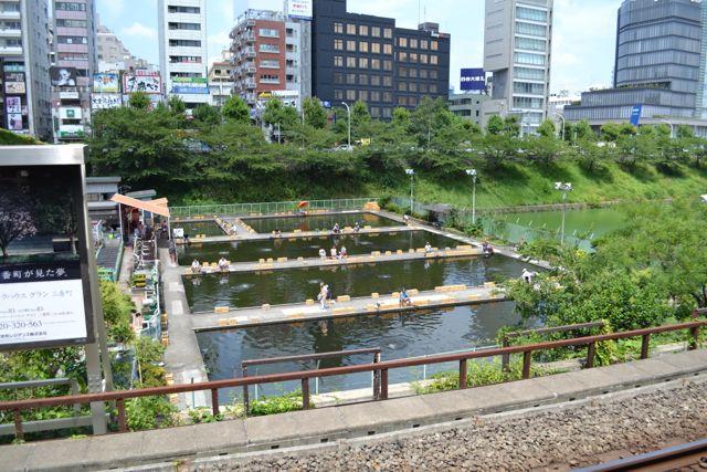 1karpfenangelen_tokyo_japan_funkloch