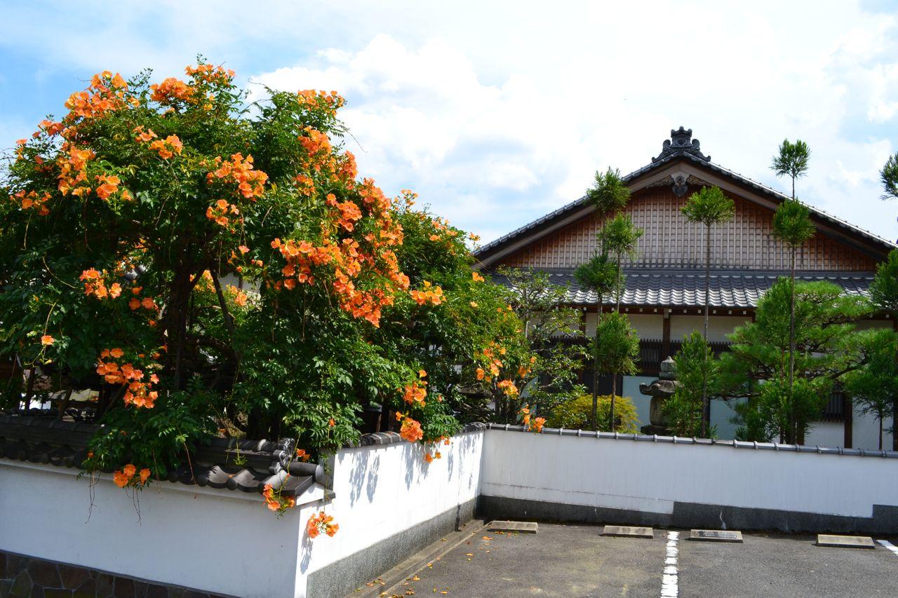 kyoto_japan_asien_asientrip_funkloch_reisen_travel20