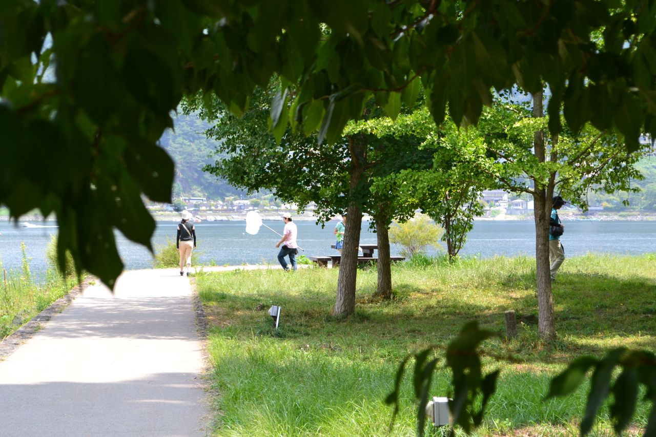 lake_kawaguchi_lake_saiko_mount_fuji_funkloch_abschalten_japan_fujiyoshida02