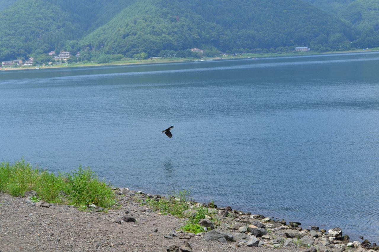 lake_kawaguchi_lake_saiko_mount_fuji_funkloch_abschalten_japan_fujiyoshida04
