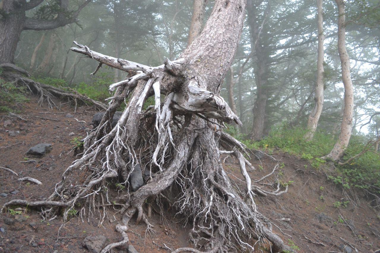 mount_fuji_climb_funkloch_japan_asientrip_abschalten33