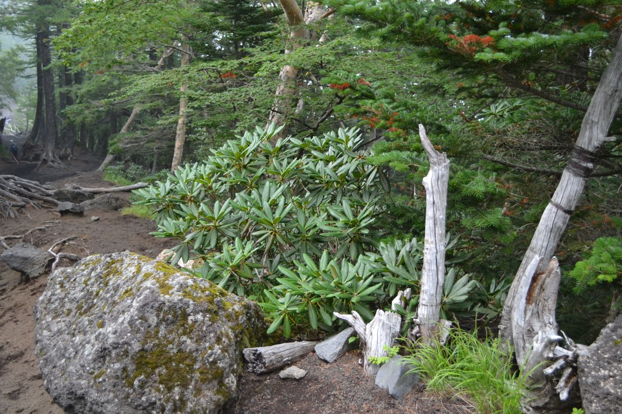 mount_fuji_climb_funkloch_japan_asientrip_abschalten34