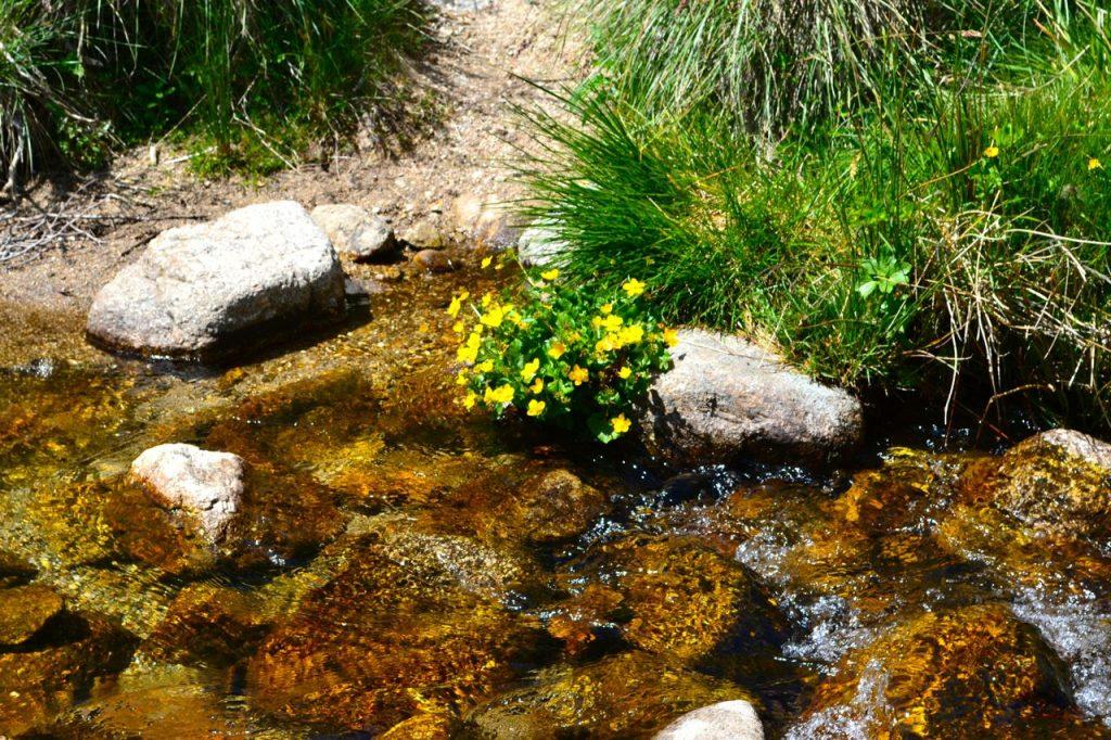 lozere-frankreich-nachhaltiger-tourismus-ökotourismus16