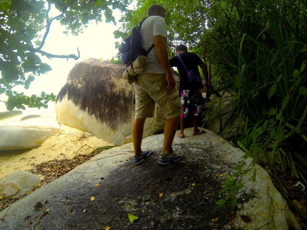 Wandern durch den Dschungel der Insel Pulau Babi Besar