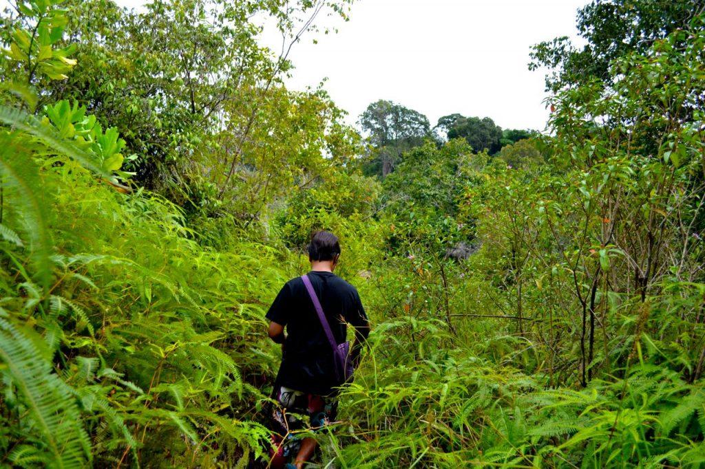 pulau-babi-besar-malaysia-trauminsel-blog-reisen-kwizzme10