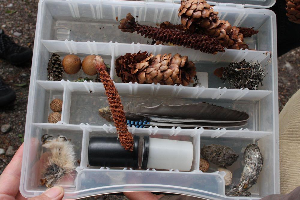 naturschuetzer-peter-sorger-weissensee-oesterreich-kasten