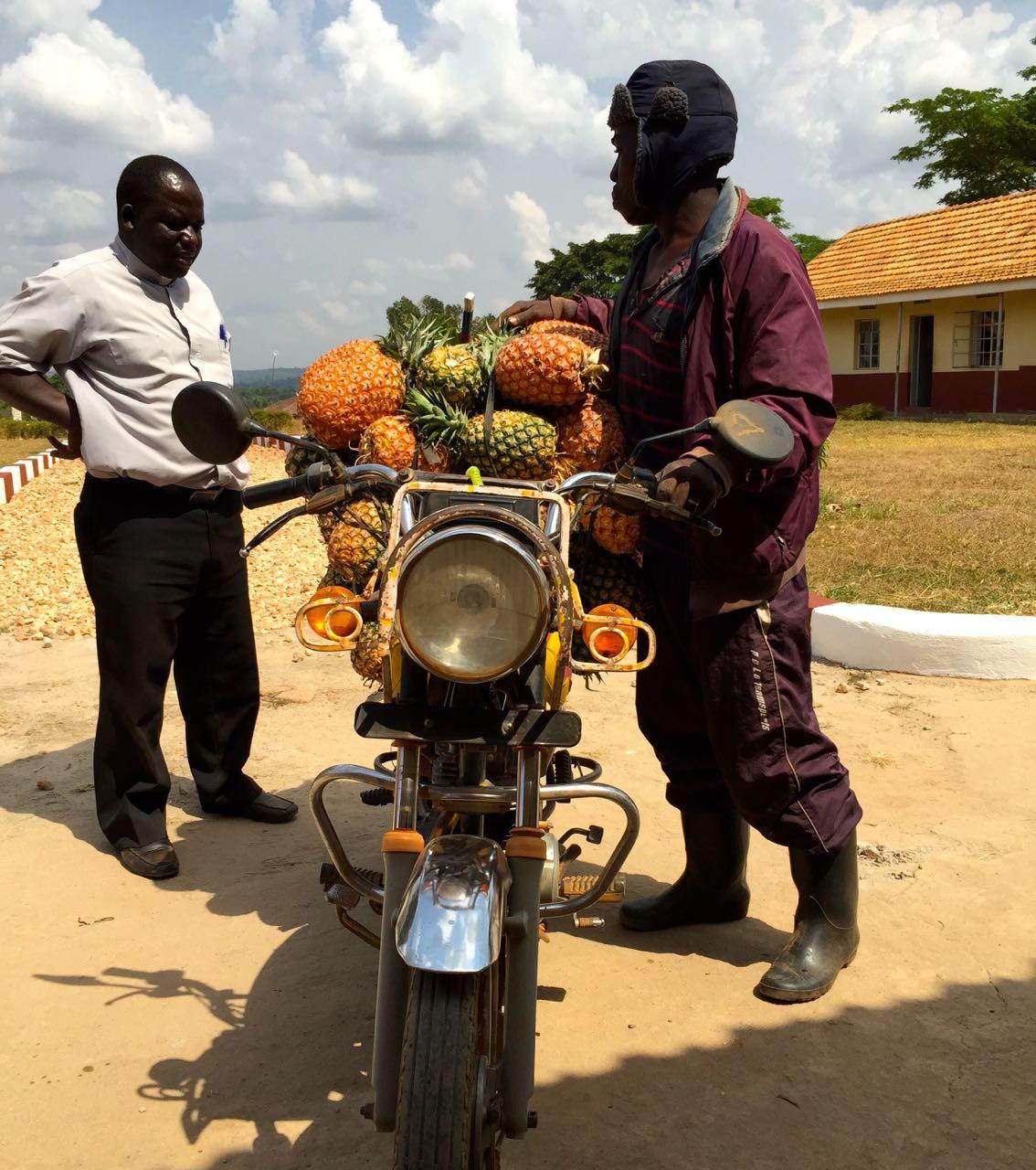 Ananashändler auf Motorrad in Nandere, Uganda