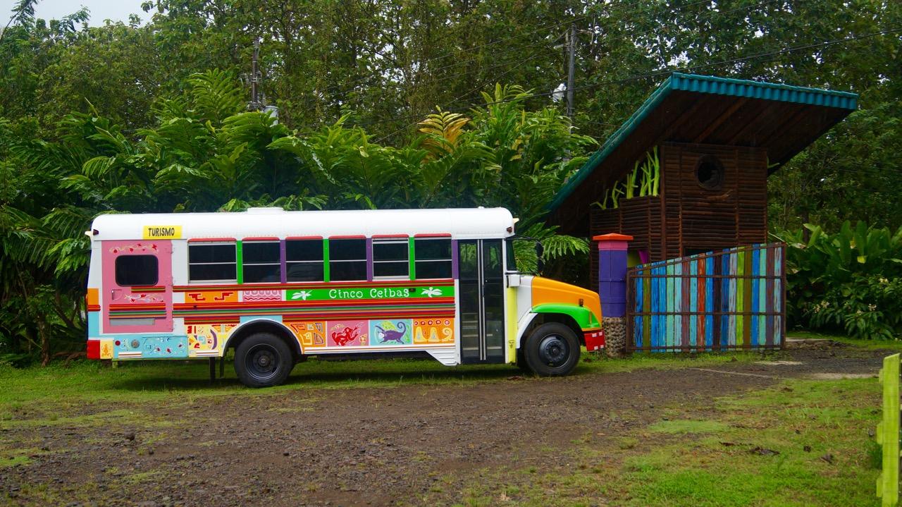 Cinco Ceibas Bus