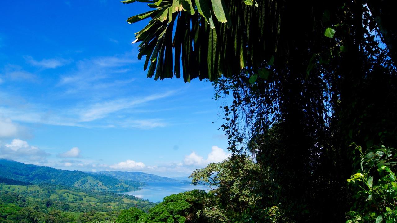 Costa-Rica-Regenwald - 10