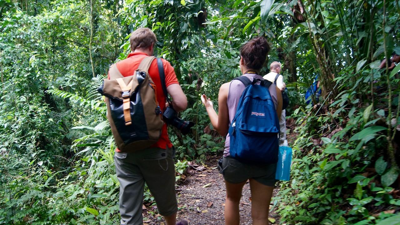 Costa-Rica-Regenwald - 26