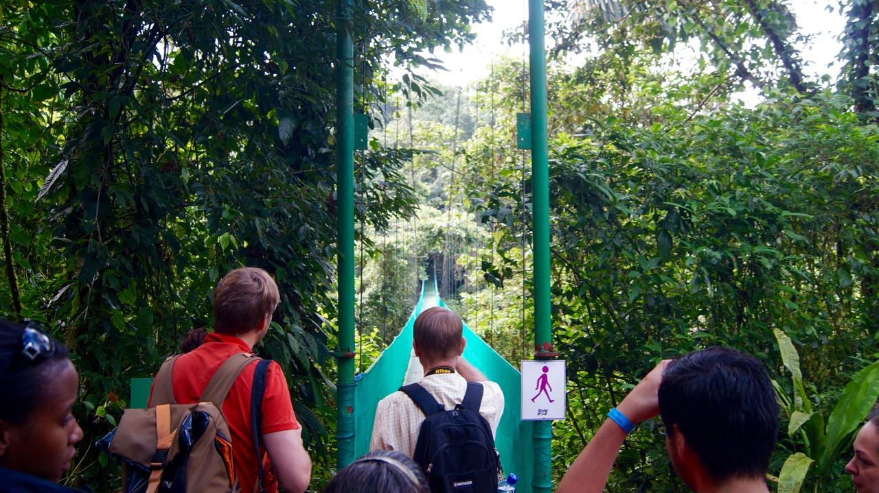 Costa-Rica-Regenwald - 3