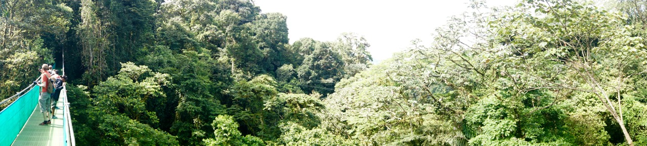 Costa-Rica-Regenwald - 4