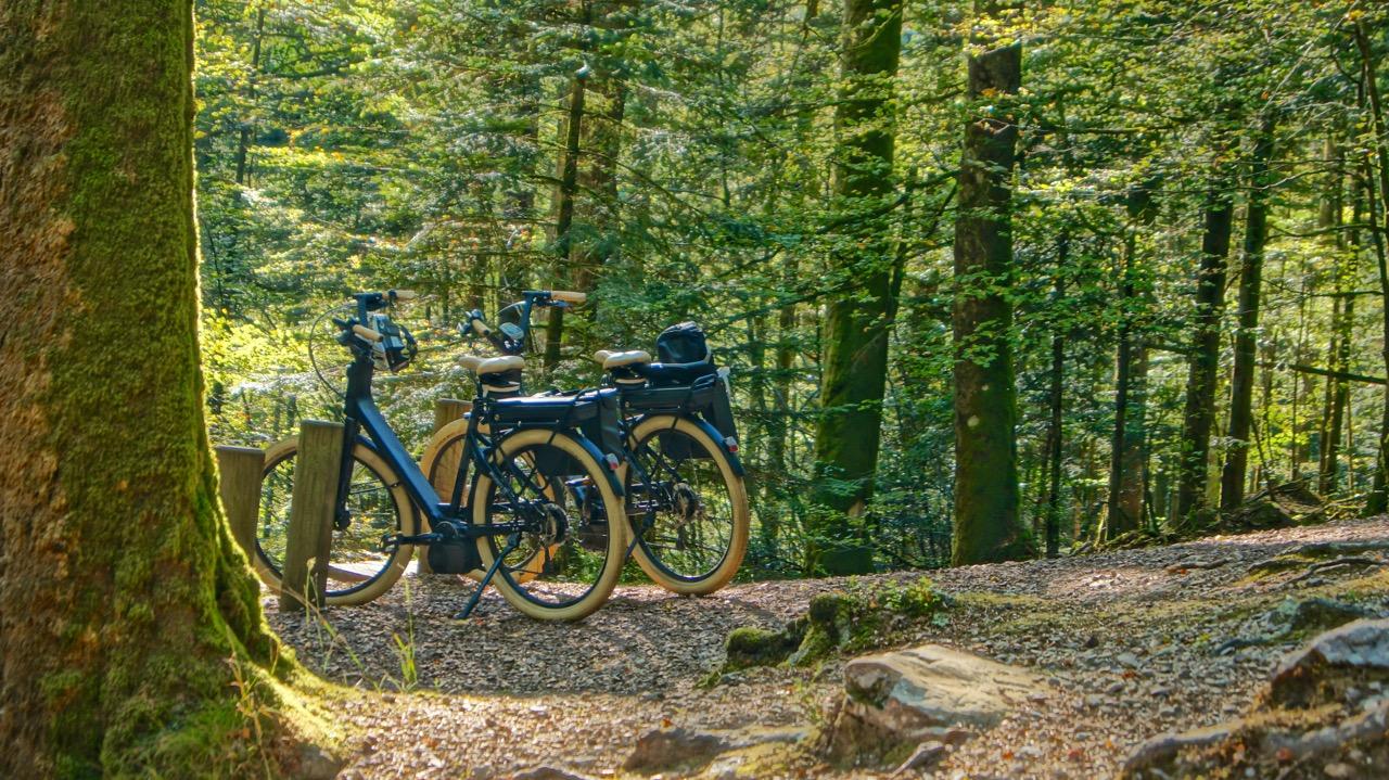 Fahrrad_Ebike