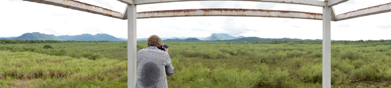 Palo-Verde-Nationalpark-Vogel - 10