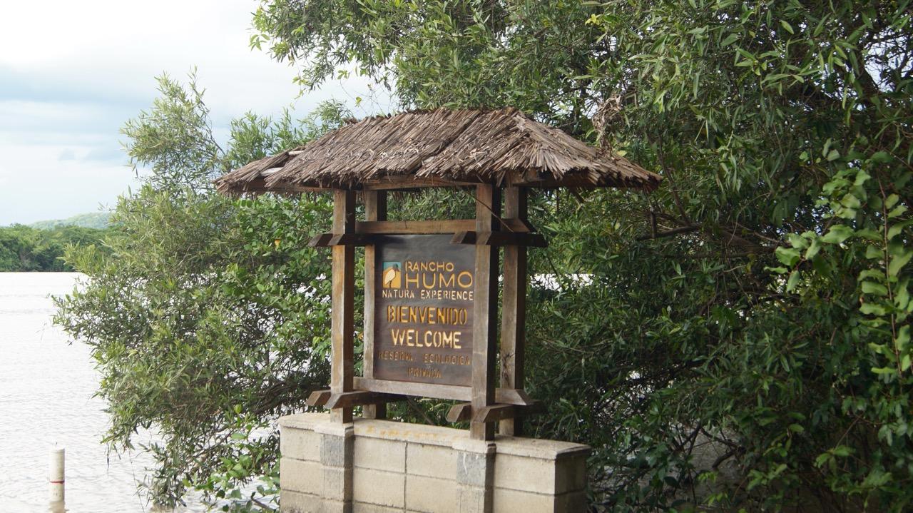 Palo-Verde-Nationalpark-Vogel - 22