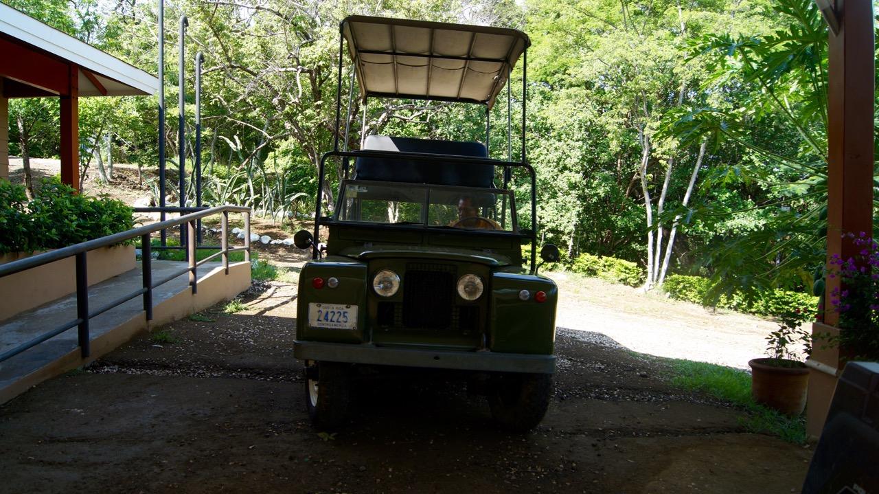Palo-Verde-Nationalpark-Vogel - 58