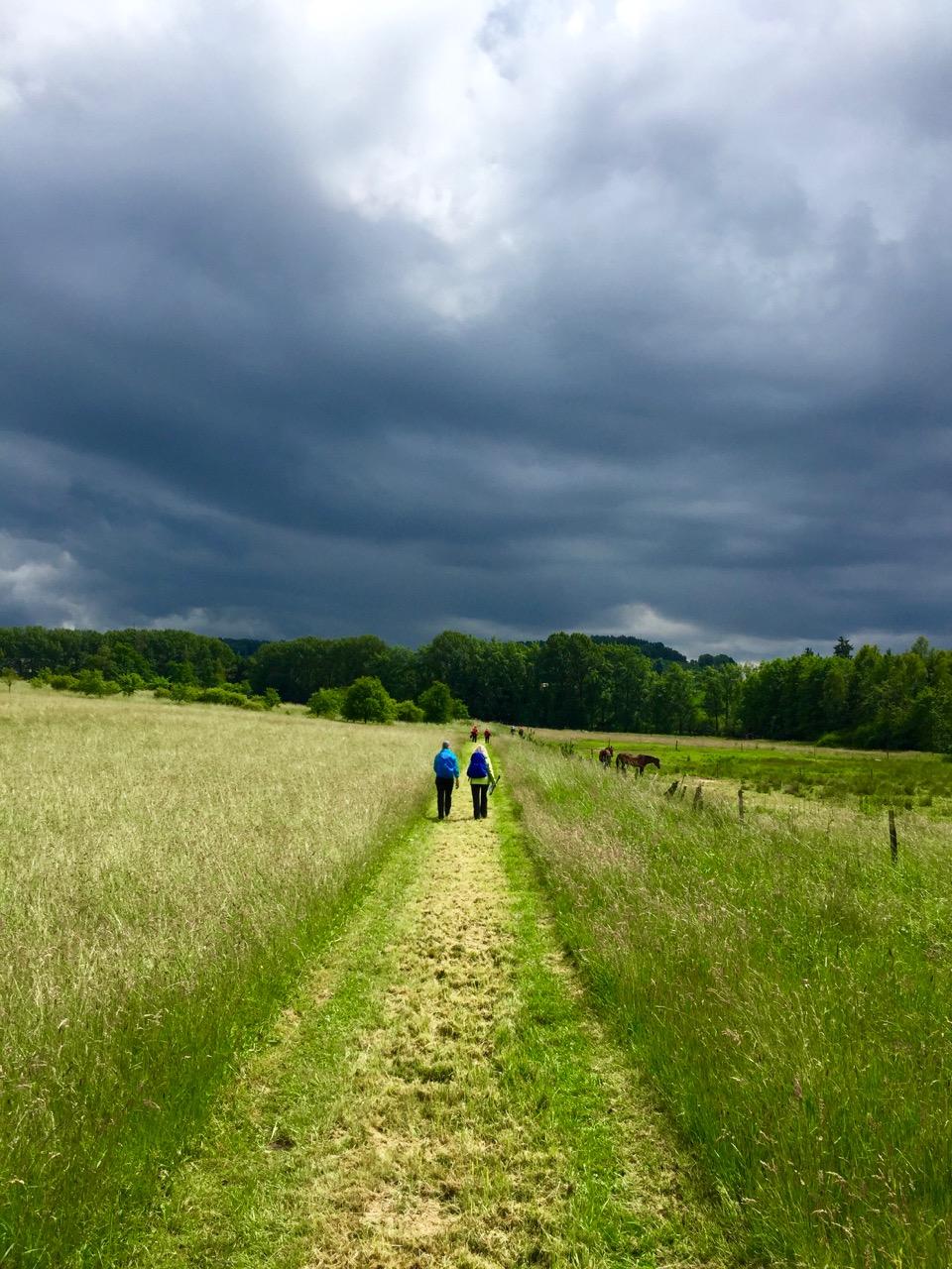 Wolkendecke-Westerwald