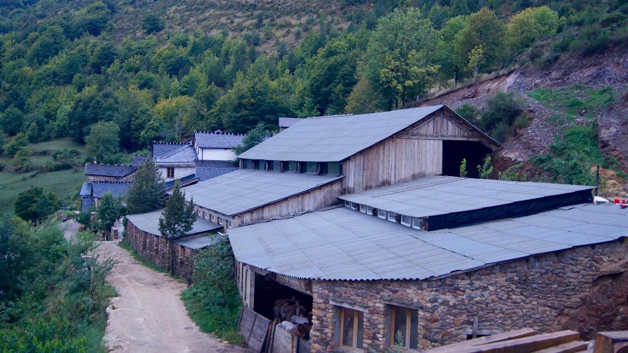 ziegenbauernhof