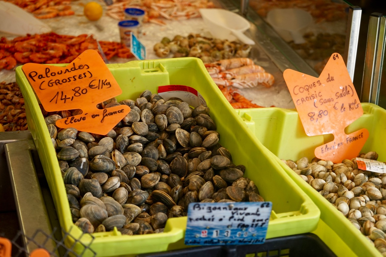 venusmuscheln-markt