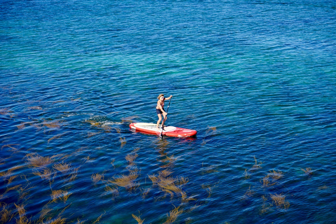 stand_up_paddling