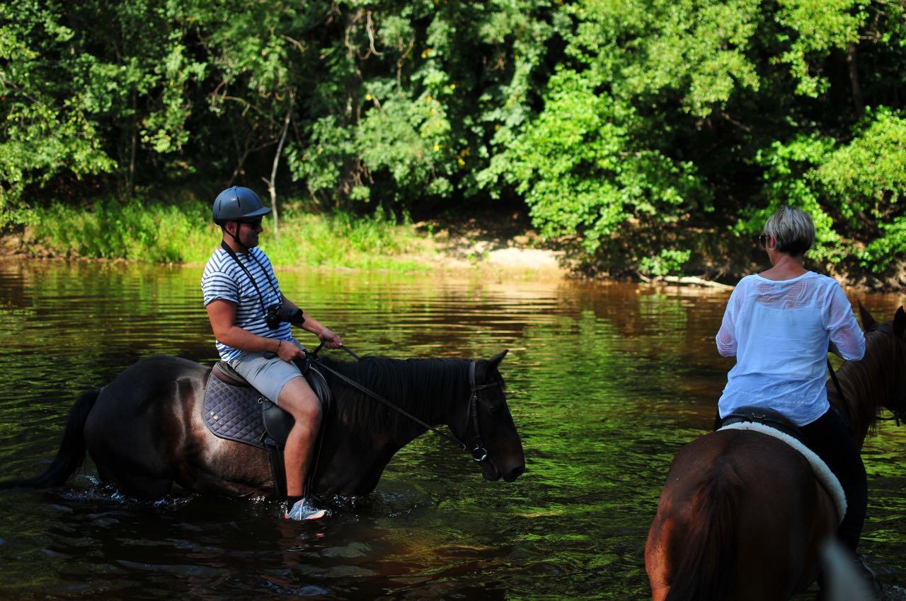 pferde-baden-im-fluss-hannes