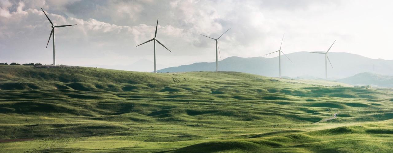 Erneuerbare Engergien nutzen für Nachhaltigkeit im Alltag