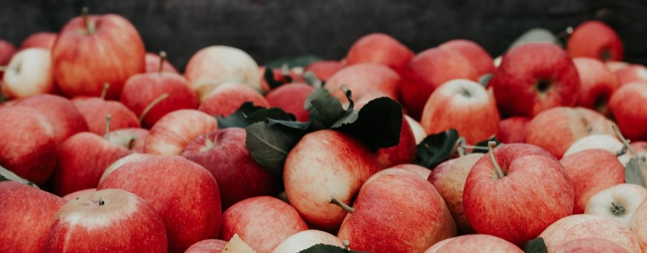 Regional und saisonal einkaufen für Nachhaltigkeit im Alltag