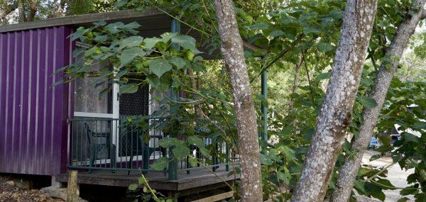 Cape-Hillsborough-Nature-Tourist-Park - 17