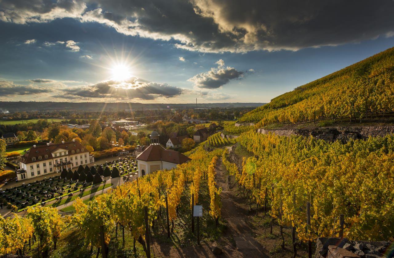 Sächsische Weinstrasse: Goldener Oktober auf Wackerbarth
